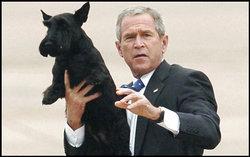 Bush_and_barney_1